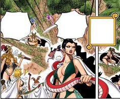 One Piece - CH517 (4).jpg