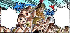 One Piece - CH515 (3).jpg